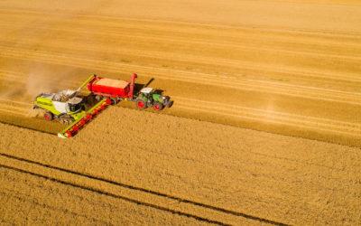Europa: Vielfalt wählen – Beispiel Agrarsubventionen